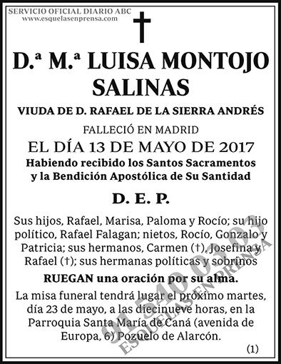 M.ª Luisa Montojo Salinas